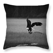 Bald Eagle Take Off Series 6 Of 8 Throw Pillow