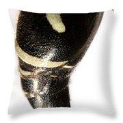Bald-faced Hornet Stinger Throw Pillow