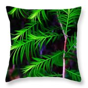 Baldcypress Throw Pillow