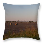 Bales In Peanut Field 1 Throw Pillow