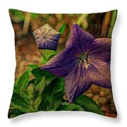 Balloon Flower - Antiqued Throw Pillow