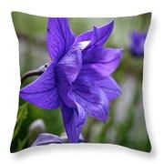 Balloon Flower Profile Throw Pillow
