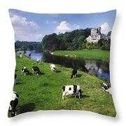 Ballyhooley, Co Cork, Ireland Friesian Throw Pillow