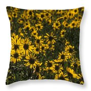 Balsamroot Field In Grand Teton Throw Pillow