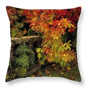 Balustrades & Autumn Colours Throw Pillow by The Irish Image Collection