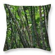 Bamboo 2 Throw Pillow