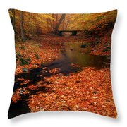 Bamboo Brook Chester New Jersey Throw Pillow