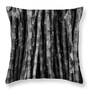 Bamboo II Throw Pillow