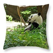 Bamboo Is Tasty Throw Pillow