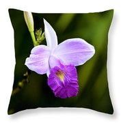 Bamboo Orchid Throw Pillow