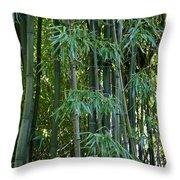 Bamboo Tree Throw Pillow by Athena Mckinzie