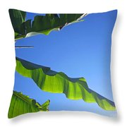 Banana Leaf In The Sky Throw Pillow