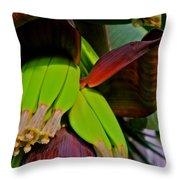 Banana Plant I Throw Pillow