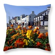 Banbridge, Co. Down, Ireland Throw Pillow