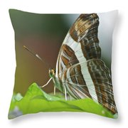 Band-celled Sister 2921 Throw Pillow