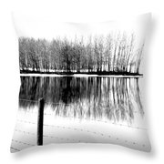 Barbed Water Throw Pillow