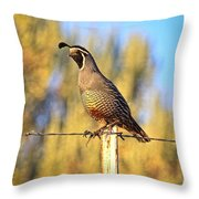 Barbed Wire Quail Throw Pillow