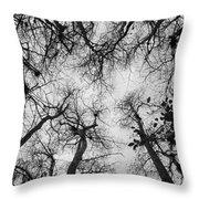 Bare Cypress Throw Pillow
