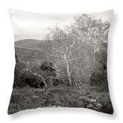 Bare Garden In The Hills Throw Pillow
