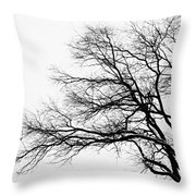 Bare Tree Silhouette Throw Pillow