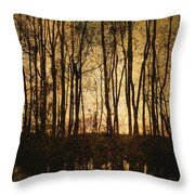Fall Trees On A Lake Throw Pillow