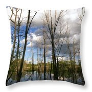 Bare Trees And Sky Throw Pillow