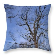 Bare Trees With Blue Sky Throw Pillow
