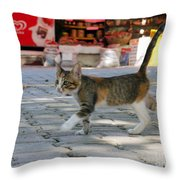 Bargain Hunter Throw Pillow