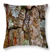 Bark At Me Throw Pillow