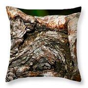 Bark Throw Pillow by Christopher Gaston