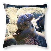 Barking Bull Throw Pillow