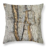 Barking Up Stream Throw Pillow