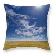 Barley Field Near Airdrie, Alberta Throw Pillow