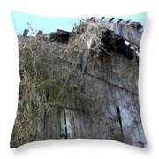Barn From Below Throw Pillow