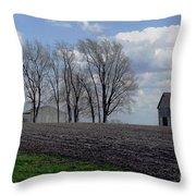 Barn Lot 1 Throw Pillow