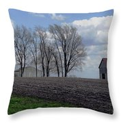 Barn Lot 1 Throw Pillow