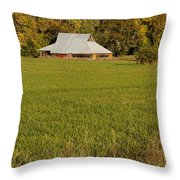Barn Near Murphy Throw Pillow