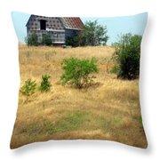 Barn On A Hill Throw Pillow