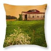 Barn On Rt. 134 Highland Co Throw Pillow