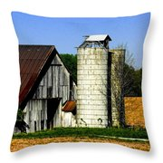 Barn Out Back Throw Pillow
