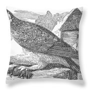 Barn Owl, 1877 Throw Pillow