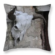 Barn Skull Throw Pillow