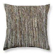 Barren Aspen Throw Pillow