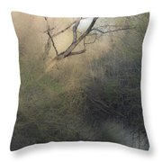 Barren Beauty Throw Pillow