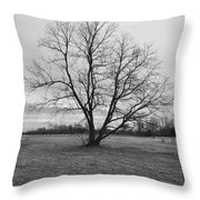 Barren Tree On A Winters Day Throw Pillow