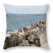 Barrier Throw Pillow