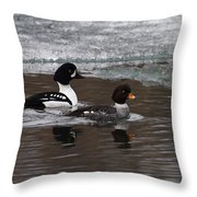 Barrows Goldeney Pair Throw Pillow