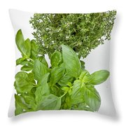 Basil And Thyme Throw Pillow by Joana Kruse
