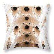 Basilica De La Sagrada Familia In Barcelona Throw Pillow