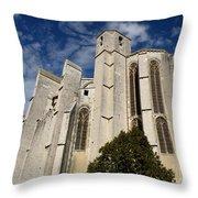 Basilica Of Saint Mary Madalene Back View Throw Pillow